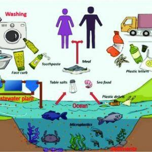 Sudaki Mikroplastik (MPP) Sorunu